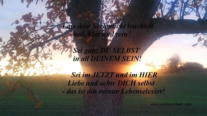 Bild und Text: S. Hahner